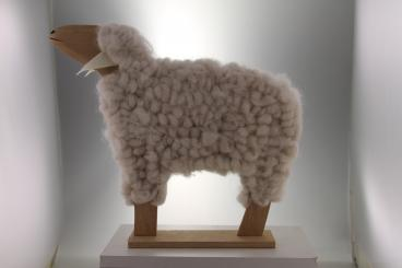 Schaf creme Holz 41 x 35 x 6,5cm